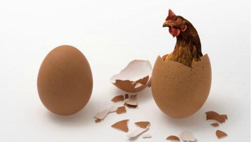 Билећка трилогија: Јаје старије од кокошке