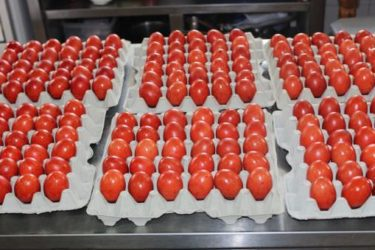 Епархија ће ове године подијелити 10.000 васкршњих јаја