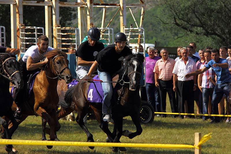 Коњичке трке Билећа 2015: Домаћа грла претплаћена на друго место