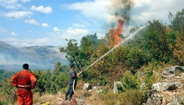 """Билећа: Ватра """"гута"""" десетине хектара растиња и шуме"""