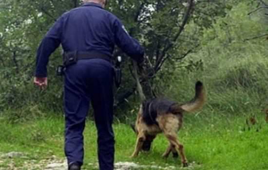 НАКОН 7 ДАНА ПОТРАГЕ: Ратко Шиповац пронађен жив и здрав