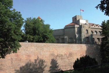 Истраживања: Гдје се налази стећак Радоње Ратковића?