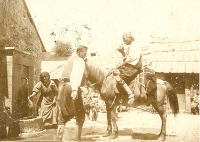 nevesinje 1903