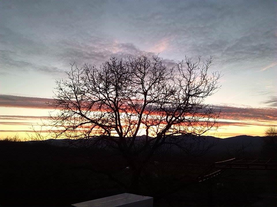 Прољеће над Херцеговином (фото: Јелена Радмиловић)