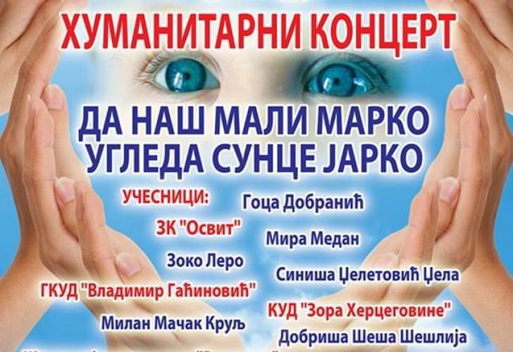 Билећа: Вечерас хуманитарни концерт за лијечење дјечака из Пребиловаца