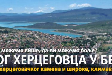 BLOG JEDNOG HERCEGOVCA U BEOGRADU: Momci, moji Hercegovci, glavu gore!
