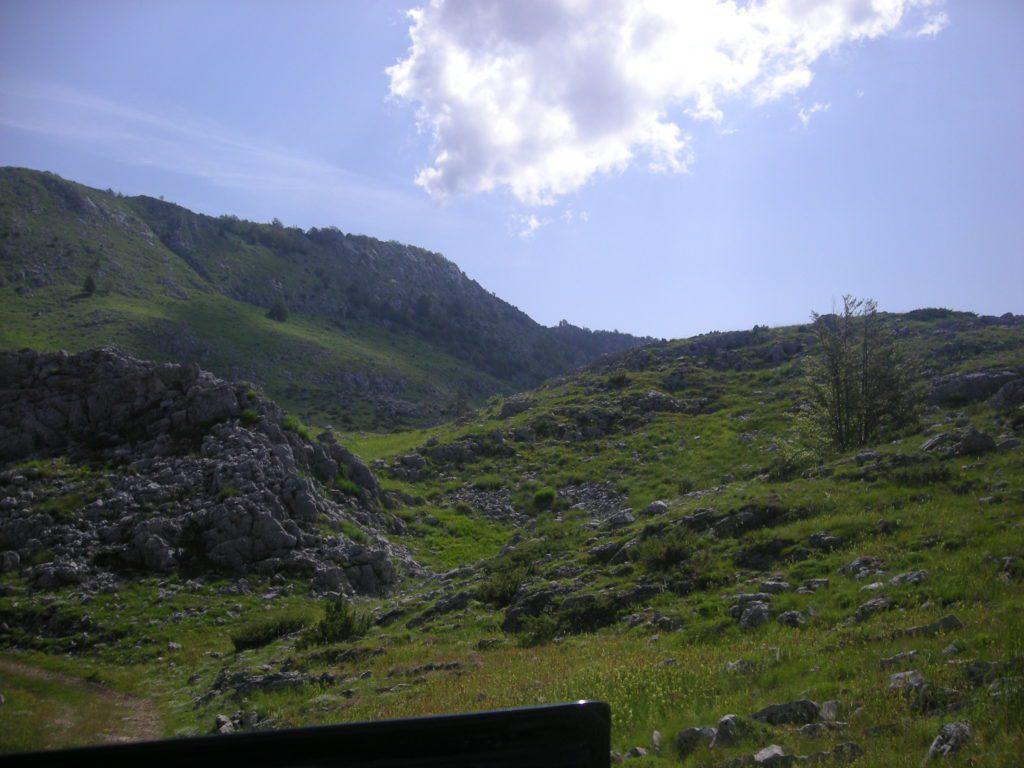 planina 009