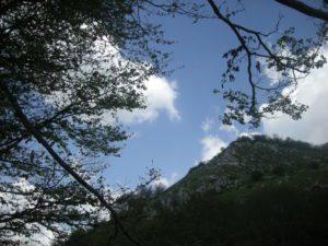 planina 052