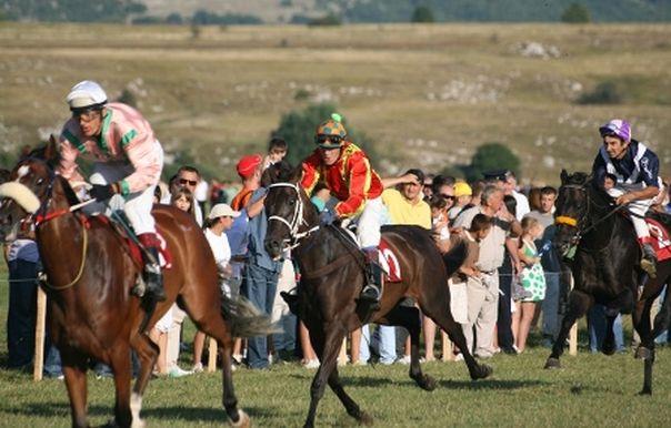 pres-trke-konja