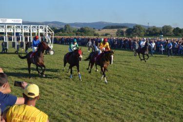 Kоњским тркама завршена Невесињска олимпијада