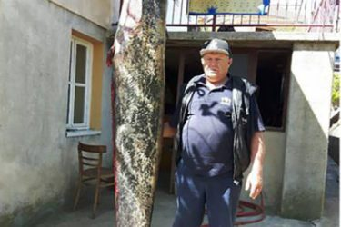 Требињац Слобо Спаић уловио сома од 85 кг