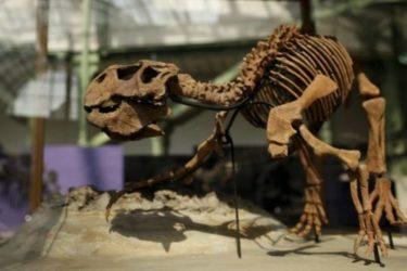 Стигли диносауруси у Град сунца