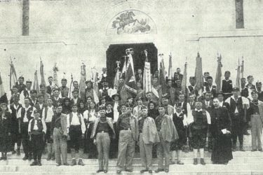 Соколи у Тополи