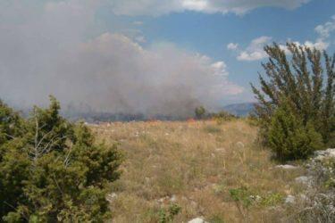 ЉУБИЊЕ: Изгорјела штала са стоком, помоћни објекат и кошнице (ФОТО)