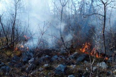 Posljedice požara u Hercegovini (VIDEO)