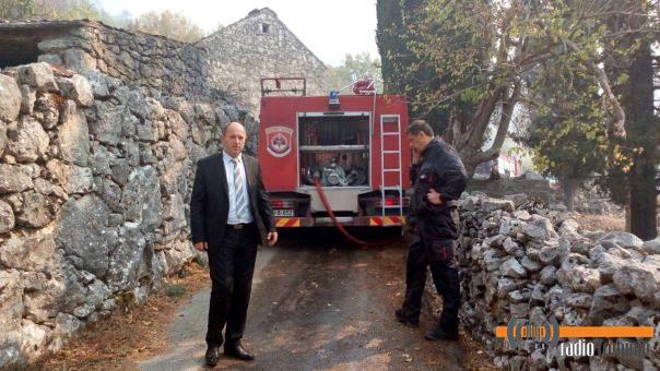 ЛУКА ПЕТРОВИЋ: Пожари подметнути, за пиромане високе новчане казне