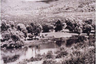 ТРЕБИШЊИЦА КОЈУ НЕ ПОЗНАЈЕТЕ: Гаовица се вратила у Билећко језеро