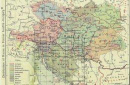 110 ГОДИНА ОД АУСТРОУГАРСКЕ АНЕКСИЈЕ БИХ: Увод у Први свјетски рат