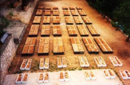 MILENKO JAHURA: Rat protiv srpskih žrtava i kult ustaša kao mučenika u Hercegovini