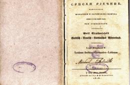 Огњен Војводић: ДВЈЕСТОГОДИШЊИЦА СКАНДАЛОЗНОГ КАРАЏИЋЕВОГ РЈЕЧНИКА