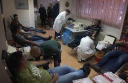 ШАМПИОНИ ХУМАНОСТИ: Херцеговци у Новом Саду за четири сата прикупили 92 дозе крви