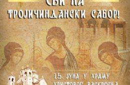 ОДБРАНА ЦРКВЕ: Бити или не бити, за Србе у Црној Гори!