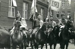 Соколска коњица