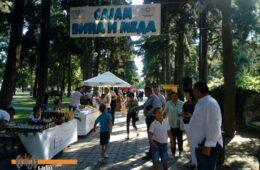 ОТВОРЕН САЈАМ МЕДА И ВИНА: Херцеговачке делиције у хладу градског парка