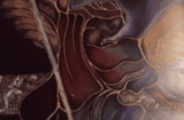 """НОВИ САД, 10. ФЕБРУАР 2020. ГОДИНЕ: """"У души засвијетли"""" - изложба о поезији Јована Дучића"""