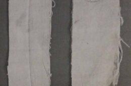"""РАЗБИЈАЊЕ МИТА: """"Бијеле траке"""" у Приједору 1992. године"""
