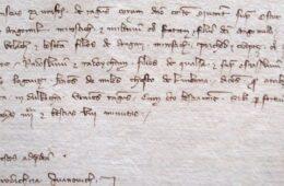ЗАПИС ИЗ ДУБРОВАЧКОГ АРХИВА: Љубиње се у писаним документима први пут помиње 1335. године