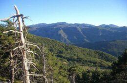 Орјен и званично проглашен Парком природе