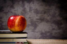 Дехуманизација образовања и освета лоших ђака