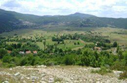 БОРО ГРАХОВАЦ: Куд се ђеде српска историја?!