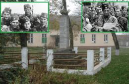 О ОВОМЕ СЕ НЕ ПИШЕ! Некажњени злочини босанских муслимана над Србима у Срему