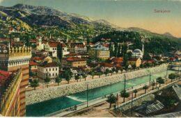 "СОКОЛИ И МЛАДА БОСНА: Поводом филма ""Атентат у Сарајеву"""
